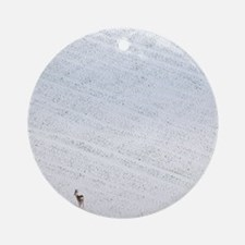 Deer in a distant snow covered fiel Round Ornament