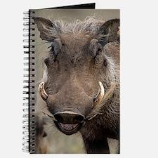Desert warthog Journal