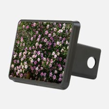 Daphne sericea Hitch Cover