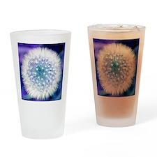 Dandelion seed head Drinking Glass