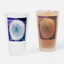 Dandelion seed head Drinking Glass