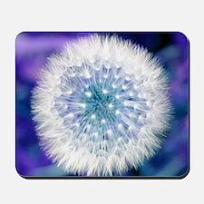 Dandelion seed head Mousepad