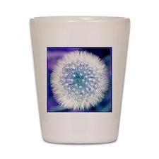 Dandelion seed head Shot Glass