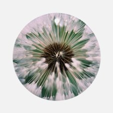 Dandelion seed head Round Ornament