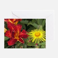 Day lily and Inula hookeri Greeting Card