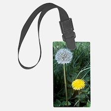 Dandelion (Taraxacum officinale) Luggage Tag