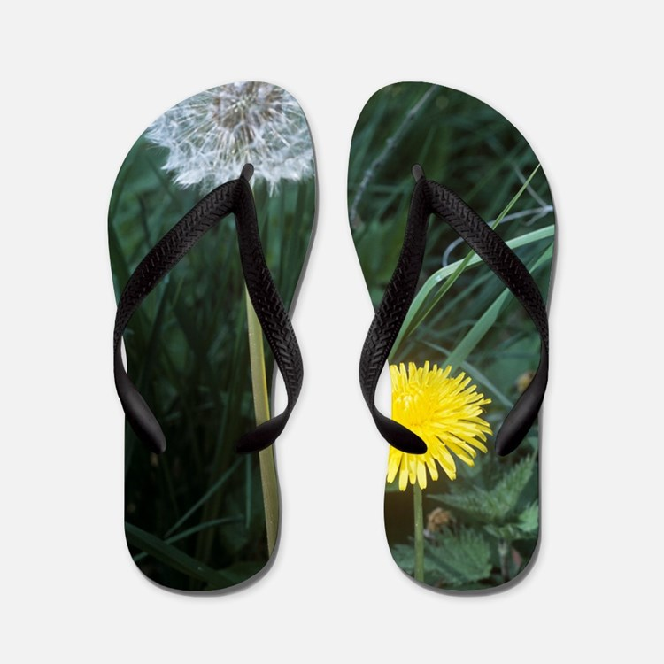 Dandelion (Taraxacum officinale) Flip Flops