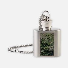 Daphne bholua 'Jacqueline Postill' Flask Necklace