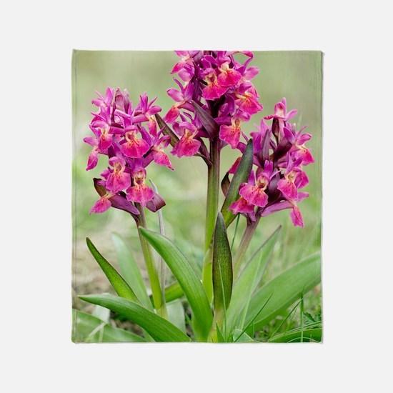 Dactylorhiza sambucina orchids Throw Blanket