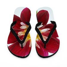 Dahlia 'Mary Eveline' flower Flip Flops