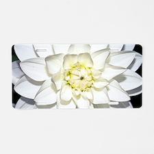 Dahlia 'Le Castel' Aluminum License Plate