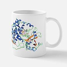 Cytochrome P450 molecule Mug