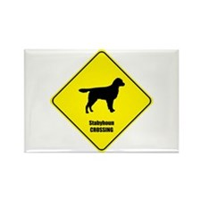 Stabyhoun Crossing Rectangle Magnet (100 pack)