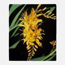 Crocosmia 'Rowallane Yellow' flowers Throw Blanket