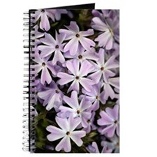 Creeping phlox (Phlox subulata) Journal