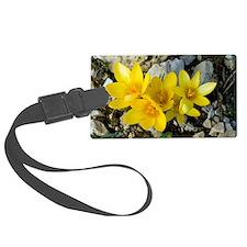 Crocus chrysanthus Luggage Tag
