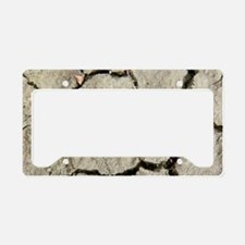 Cracked mud, Canadian Arctic License Plate Holder