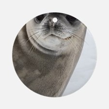 Crabeater seal Round Ornament