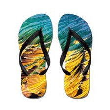 Cortisol crystals, light micrograph Flip Flops