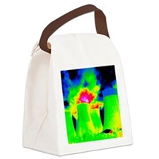 Cooling towers, thermogram Canvas Lunch Bag