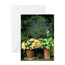 Container plants Greeting Card