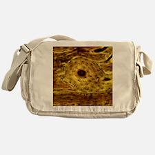 Compact bone, light micrograph Messenger Bag