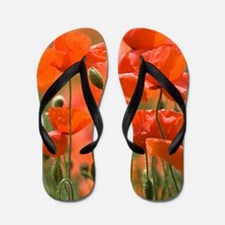 Common poppies (Papaver rhoeas) Flip Flops