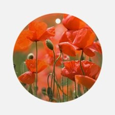Common poppies (Papaver rhoeas) Round Ornament