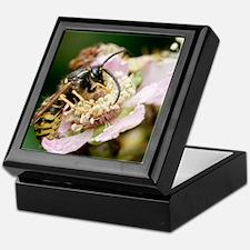 Common wasp feeding on a flower Keepsake Box