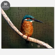 Common kingfisher on a branch Puzzle