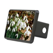 Common snowdrops (Galanthu Hitch Cover