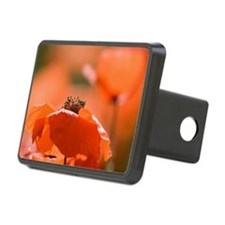 Common poppies (Papaver rh Hitch Cover
