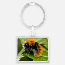 Common Carder Bumblebee Landscape Keychain