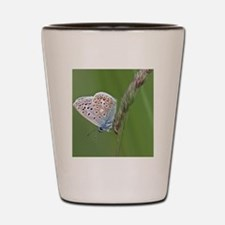 Common blue butterfly Shot Glass