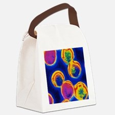 Coloured LM of Halococcus bacteri Canvas Lunch Bag