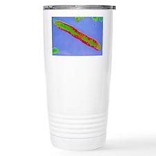 Coloured TEM of Vibrio cholerae Travel Mug