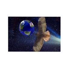 Night Hawk World Rectangle Magnet