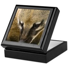 Coati Keepsake Box