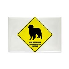 Retriever Crossing Rectangle Magnet (10 pack)