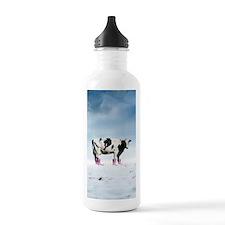 Climate change, artwor Water Bottle