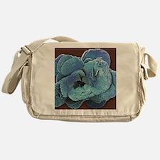 Coccoliths, SEM Messenger Bag
