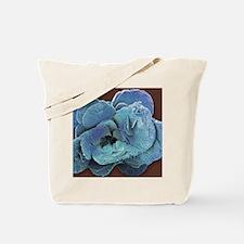 Coccoliths, SEM Tote Bag
