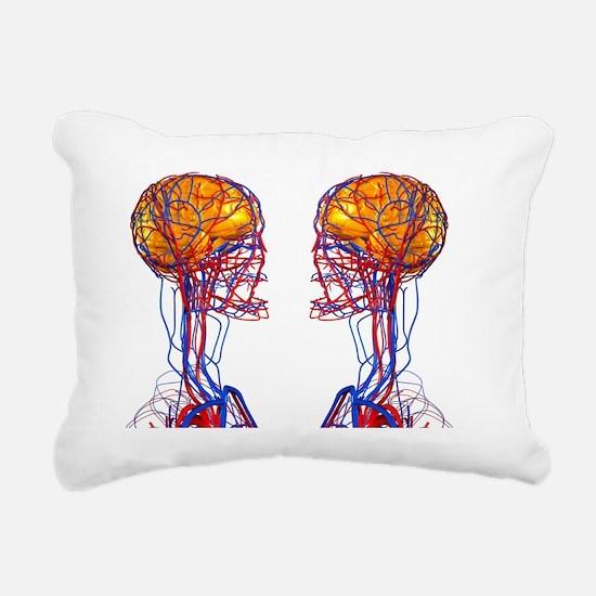 Circulatory system and b Rectangular Canvas Pillow