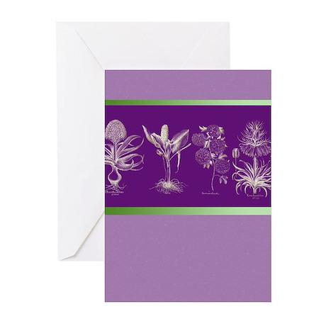 Floral Design 3 Greeting Cards (Pk of 10)