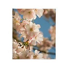 Cherry blossom (Prunus 'Accolade') Throw Blanket
