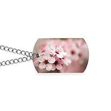 Cherry Plum (Prunus ceracifera) Dog Tags
