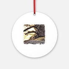 Desert Bobcat Round Ornament