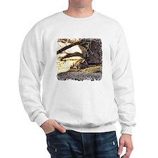 Desert Bobcat Sweatshirt