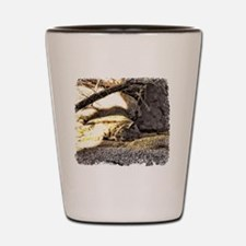 Desert Bobcat Shot Glass