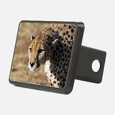 Cheetah Hitch Cover